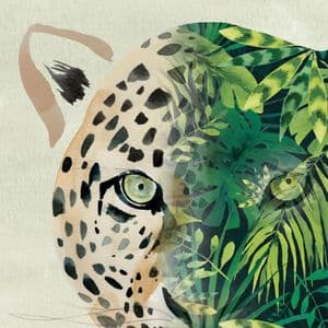 BN7  Leopard Blank Greeting Card